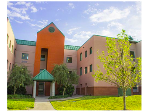 Holly Apartments Tampa Exterior And Clubhouse