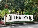 The Ivy Tampa Exterior and Clubhouse