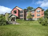 Campus Lodge Apartments Lutz Exterior and Clubhouse